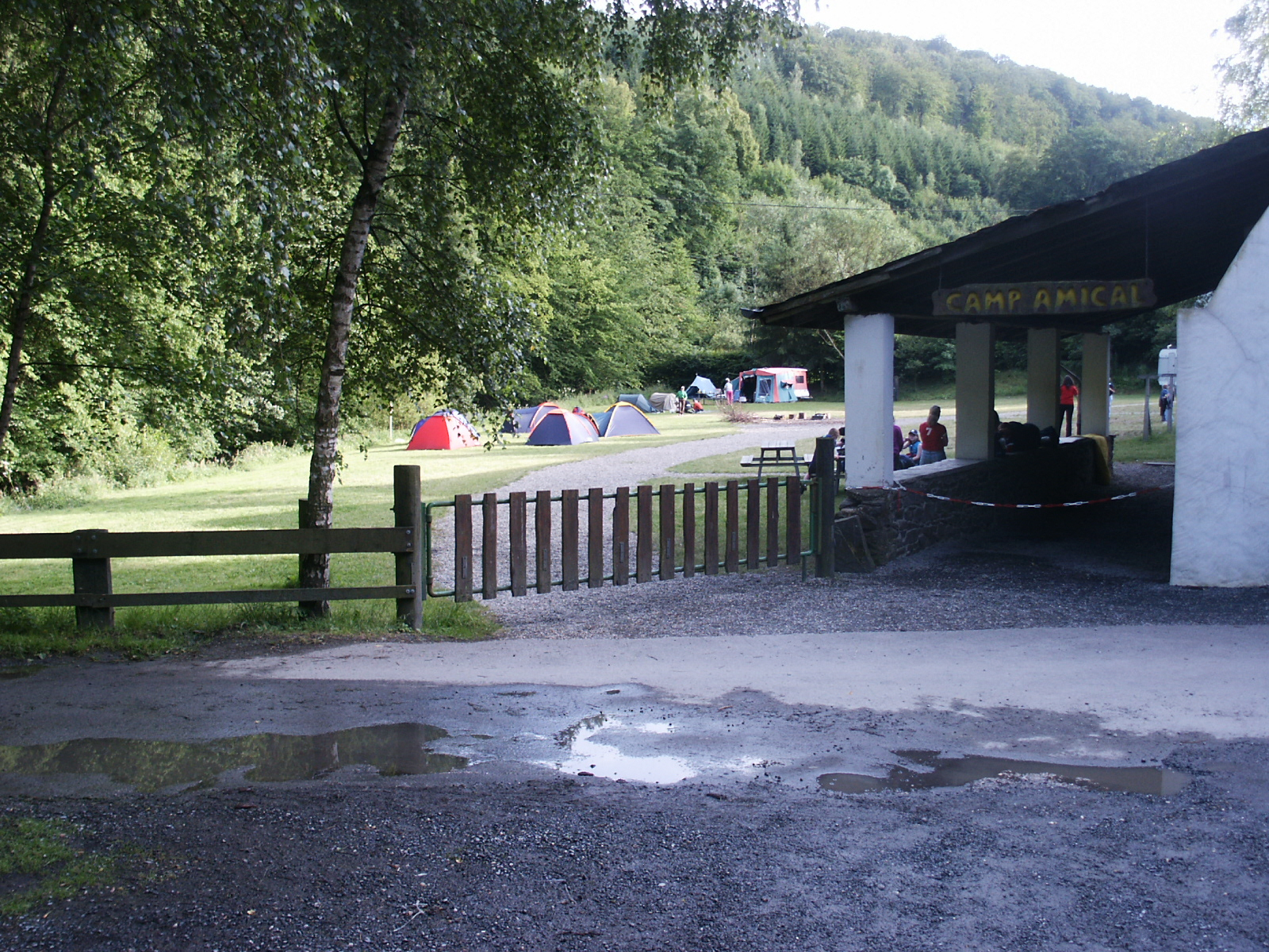 Camping Eule